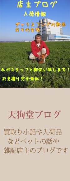 campaign/2013 Autumn/夏で日焼けした肌を整えるこの秋限定のキャンペーンを実施中!